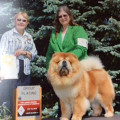Over 30 years of expert dog care dog boarding & pet sitting