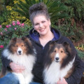 Dogs are our passion and priority! dog boarding & pet sitting