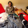 Rachel's Pampered Pups dog boarding & pet sitting