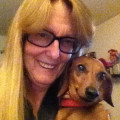 Dachshund Divas dog boarding & pet sitting