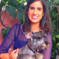 Indira & Jorge's Dog Watch dog boarding & pet sitting