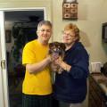 Canine's Chalet dog boarding & pet sitting