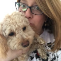 Passion for animals-Centreville Va. dog boarding & pet sitting
