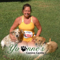 Yvonne's Canine Castle dog boarding & pet sitting