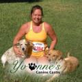 Yvonne's Canine Castle dog boarding & pet sitting