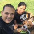 Acuarela Dog House & Hotel dog boarding & pet sitting