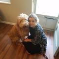 Barker Parkers! dog boarding & pet sitting