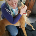 Pup Love in Leesburg dog boarding & pet sitting