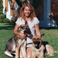 Englishtrainer- boarding-training dog boarding & pet sitting