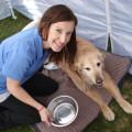 A Better Way Pet Care dog boarding & pet sitting