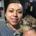 Jessi's Doggy Care dog boarding & pet sitting