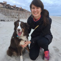 Carrboro Dog Lovers dog boarding & pet sitting