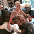 Two Grannies dog boarding & pet sitting