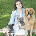 Danica's Doggy Daycare dog boarding & pet sitting