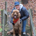 Happier-at-Home dog boarding & pet sitting
