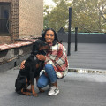 Tyra the Talented Pet Sitter dog boarding & pet sitting