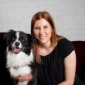 Wags While You're Away! dog boarding & pet sitting