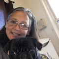 Laura's Loving Critter Home! dog boarding & pet sitting