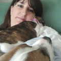 Ali's Loving Care Daycare - Bording dog boarding & pet sitting
