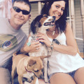Tricia's puppy parade dog boarding & pet sitting