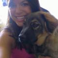 AmyLou-PoCo Boarding & Pet Services dog boarding & pet sitting