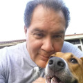 Joseph doggy boarding dog boarding & pet sitting