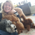 I am a loving and careing Dog Mama dog boarding & pet sitting