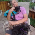 Lori's 4 Dogs  Concierge dog boarding & pet sitting