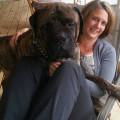 Anna's Dog Boarding dog boarding & pet sitting