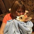 Gigi Dog Care dog boarding & pet sitting