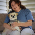A Small Dog's Favorite Place! dog boarding & pet sitting