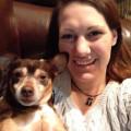 Schreiber Tails dog boarding & pet sitting