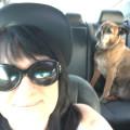 Rhonda's Blossom Hill Playhouse dog boarding & pet sitting