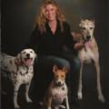Cheryl's Dog Haven dog boarding & pet sitting