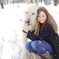 Malori's Lexington Doggie Care dog boarding & pet sitting