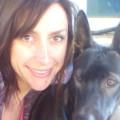 Cyrillia's Doggie Lounge:LOVE dogs! dog boarding & pet sitting