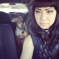 Sasha and Luna's Pet Care dog boarding & pet sitting