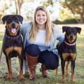Rachel's dog boarding dog boarding & pet sitting