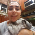 Pet's best friend from Andros isle dog boarding & pet sitting