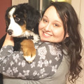 The Dog Mom- Roanoke dog boarding & pet sitting