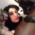 Seda's Pup Palace in Fresno CA! dog boarding & pet sitting
