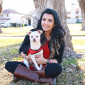 Shafali's Spoiled Rotten Dogs dog boarding & pet sitting