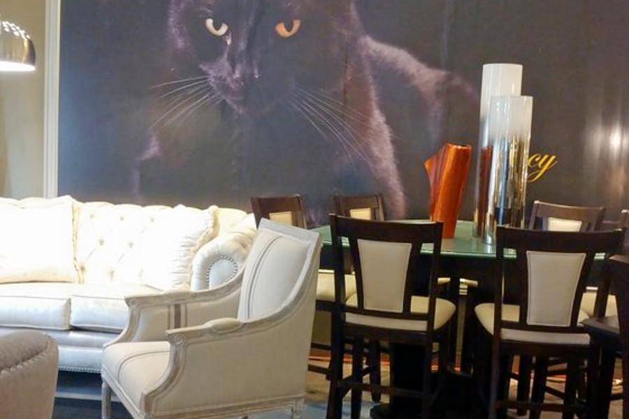 The 5 Best Furniture S In, Furniture In Sacramento