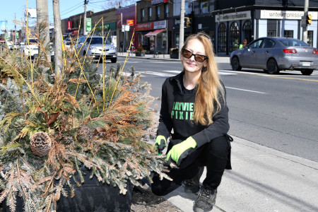 Local volunteer spruces up Leaside's main street