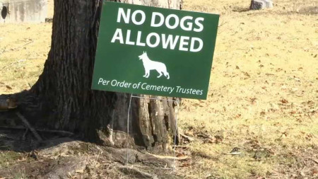Dogs Banned From Public Cemetery