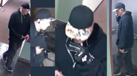 CAPTURED: WMW viewer tip leads to ID of White Center burglary suspect