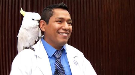 Virginia Police Help Reunite Magician and Lost Cockatoo