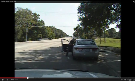 Bills That Could Have Prevented Sandra Bland's Arrest Get Hearing