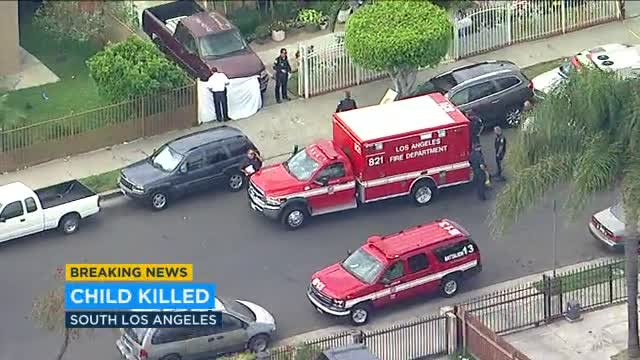 Uncle backs up truck, fatally strikes 2-year-old in South LA