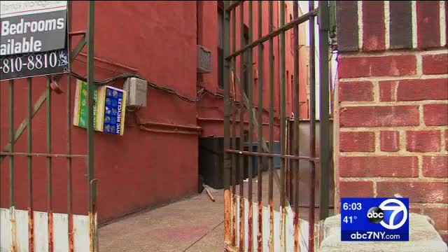 Firefighters in Bronx discover marijuana operation in building basement